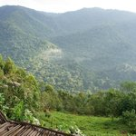 View from lodge, Bwindi Impentrable Forest