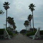 竜洋海洋公園01