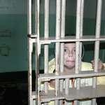 Me in a jail cell.
