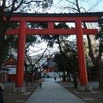 02花園神社 鳥居