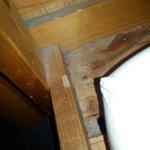 Dust on the bunkbed.