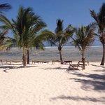 Spiaggia del twiga :)