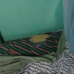 Bed/mattress