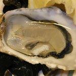 生牡蠣はシードルと合いますね。