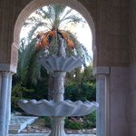 Fountain by the hotel entrance