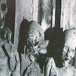 Mummified corpses Saint Michel