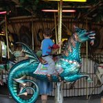Carousel Dragon at Lowry Park Zoo