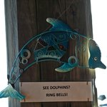 If you see a dolphin, ring a bell.  We didn't see any but still a neat thing for patrons.