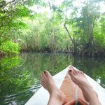 kayaking through mangroves aaaayyyyy bliss