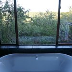 bathtub view
