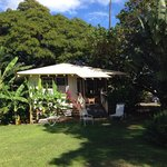 #57 cottage with tons of privacy provided by plants, flowers and trees.  Taken from great lawn a