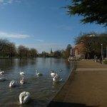The RSC & river Avon
