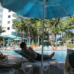 Superbe piscine dans la palmeraie !