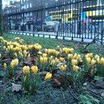 Весна в парке!