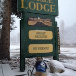 PET FRIENDLY welcome sign