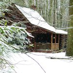 Apple Blossom cabin in the winter