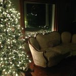 Sitting Area with Christmas Tree!