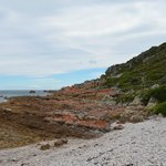 Rocky Cape National Park (4)