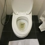Cigarete in toilet. Did you check room before guesst check in?