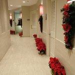 Hotel hallway to elevator