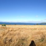 View coming into Lake Taupo