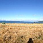 View coming into Lake Taupo