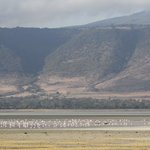 Crater lake and lodge in background + a few flamingos and hippos