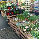 Photo of Flower Market taken with TripAdvisor City Guides