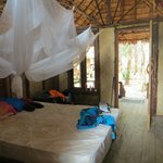 Bed and net in hut