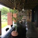 The stoep (patio)
