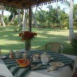 Breakfast in trh garden