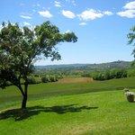View to Lucignano