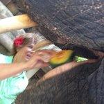 Mora likes papaya