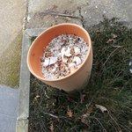 poubelle à megots jamais vidée