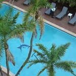 Very Clean Pool as seen from our balcony