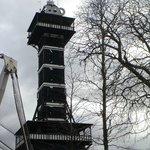torre zoo