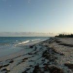 Vista de la playa hacia el sur y Cancun