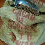 Fave di Cacao prima della tostatura a legna