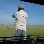 Looking for the Big Five