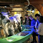 Dutch Cheese Museum