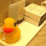 Bathroom with a duck