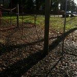 kids enjoyed the park