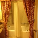 Bathroom - Well Maintained but the Curtains are a bit much