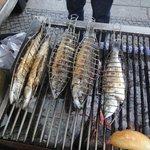 Il pesce alla griglia fresco fresco