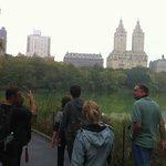 Central Park Tour