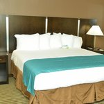 Brand New Business King room