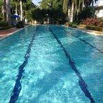 50 m. Lap Pool