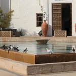 Entrance to the Spa with some of the lovely birds.