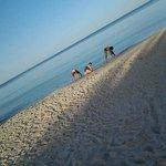 beach is always clean