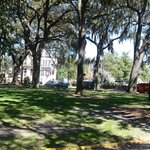 One of Savannah's beautiful parks that you will walk through with Bobby Davis.